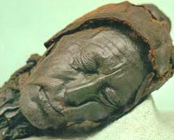 essay on the tollund man